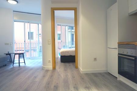 Apartment for Rent in Barcelona Portal Nou - Comerç