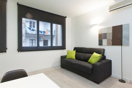 Loft for rent close to the Universities in Barcelona
