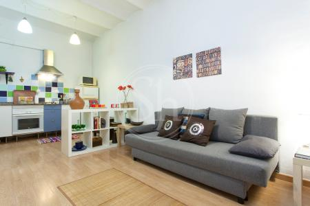 Apartment for sale in Barcelona Benavent - Avda. Madrid (licencia Turística)