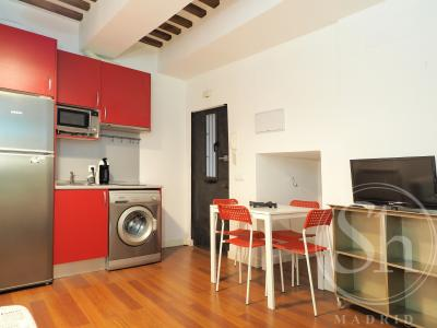 Apartment for Rent in Madrid Minas - Metro Noviciado