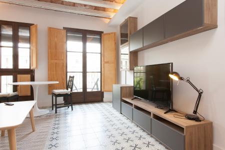 Accogliente monolocale in affitto in Carrer de Pelai