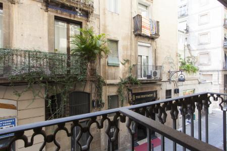 Piso en Alquiler en Barcelona Sant Pere Més Alt - Pstge Sert