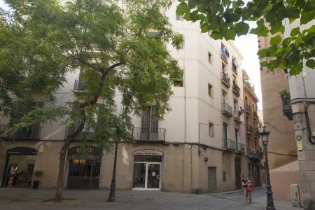 Piso en venta en Barcelona Basses De Sant Pere - Sant Pere Més Baix