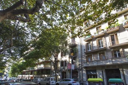 Piso en Alquiler en Barcelona Bailen - Diagonal