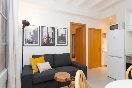 Apartment for Rent in Barcelona Palau Musica - Via Laietana