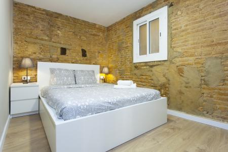 Apartment for Rent in Barcelona Portal Nou - Born