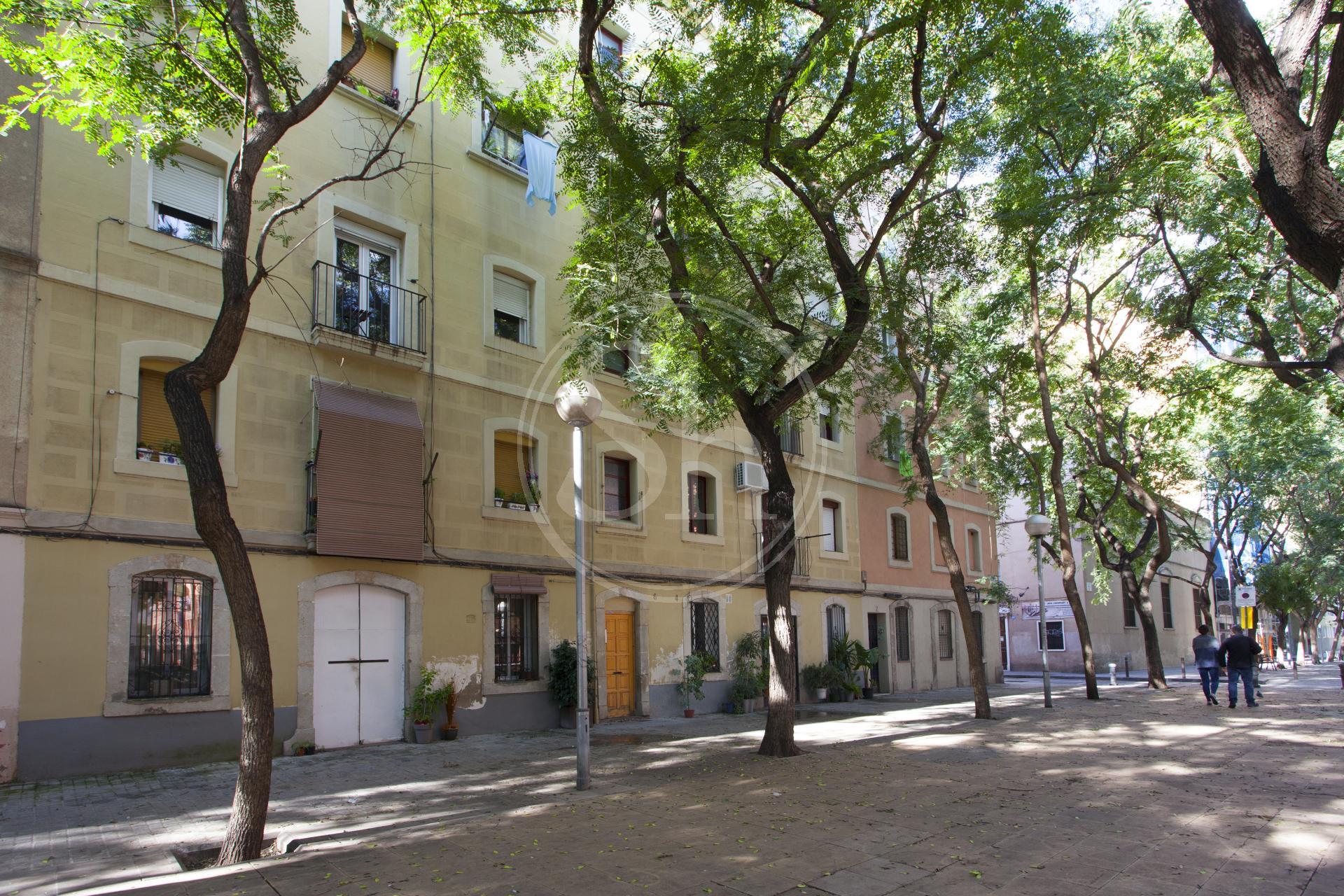Pis en lloguer barcelona ciutat vella gine i partagas ginebra - Lloguer pis barcelona particular ...