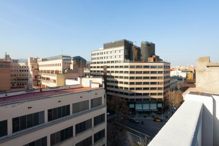 Alquiler temporal piso en calle Consell de Cent
