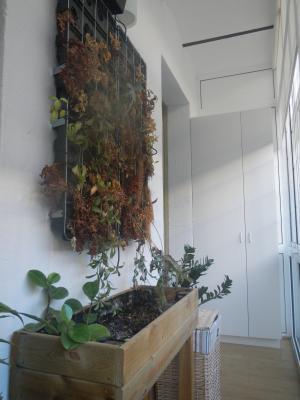 Apartment for Rent in Barcelona Provença - Calàbria