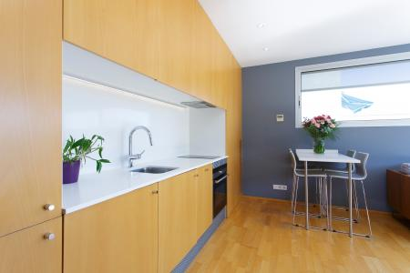 Apartment for Rent in Barcelona Coll Del Portell - Parc Güell
