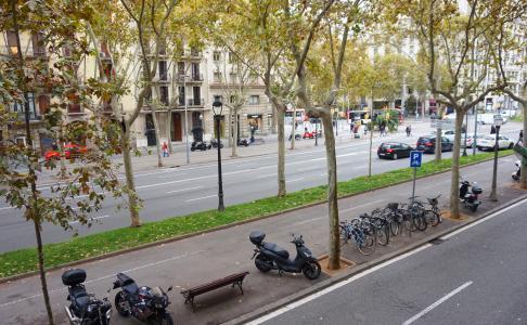 Piso en Alquiler en Barcelona Avenida Diagonal - Passeig Sant Joan