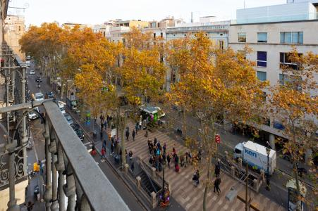 Apartment for Rent in Barcelona Ramblas-hospital