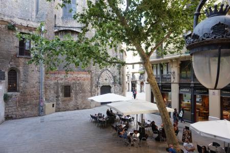 Pis en Lloguer a Barcelona Boquería - Placeta Del Pi