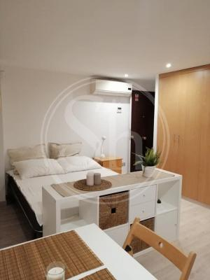Loft for Rent in Barcelona Picalquers - Carme