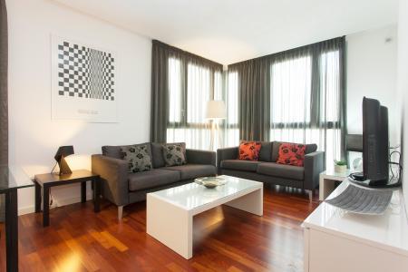 Shbarcelona modern family apartment born barcelona - Pisos de proteccion oficial barcelona requisitos ...
