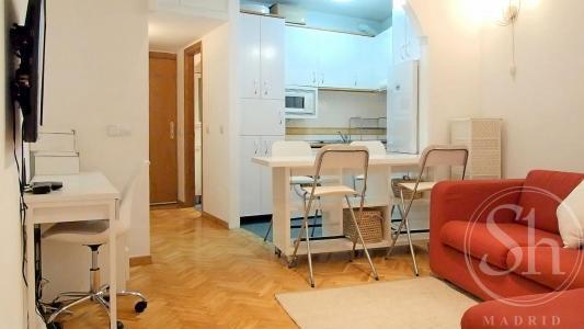 Apartment for Rent in Madrid Echegaray - Puerta Del Sol