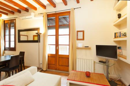 Grand studio dans le quartier du Raval
