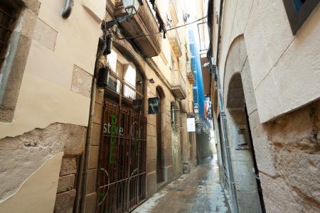 Квартира в аренду в Barcelona Flassaders - Paseo Del Born