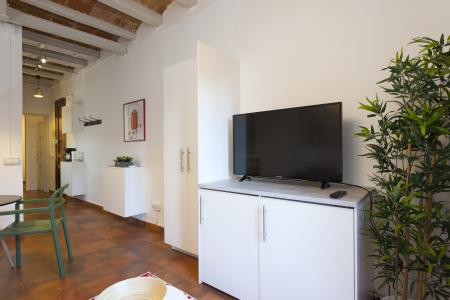 Apartment for Rent in Barcelona València - Castillejos (wifi Soon)