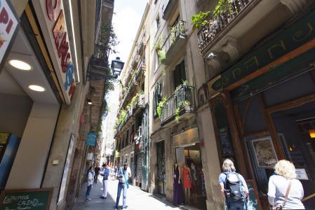 Pis en Lloguer a Barcelona Banys Nous- Rambla (til End April)