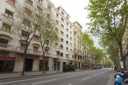 Piso en Alquiler en Barcelona Valencia - Casanova