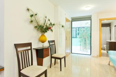 Amazing furnished loft for rent in Sugranyes