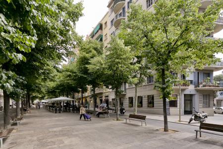 Pis en Lloguer turístic a Barcelona Avenida Gaudi - Còrsega