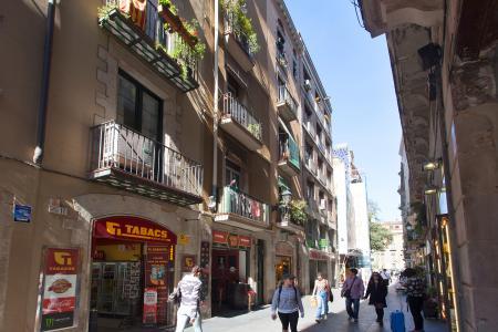 Piso en Alquiler en Barcelona Comtal- Portal Del Àngel