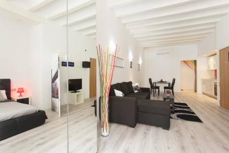 Loft te huur in Barcelona Roig - Rambla Raval