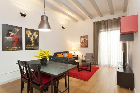Luminoso appartamento in affitto in calle Blai
