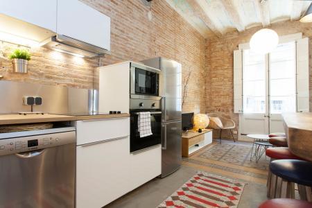 Magnifico appartamento in affitto mensile in via Joaquin Costa con Macba