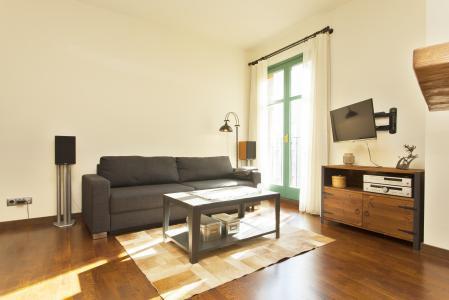 Si affitta appartamento in Carrer de Basea