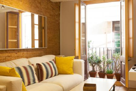 Monolocale in affitto in Carrer d'En Monèc