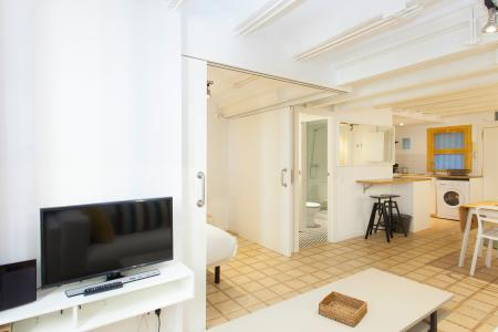 Appartement te huur in Barcelona Monec - Borne