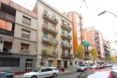 Bright apartment for rent