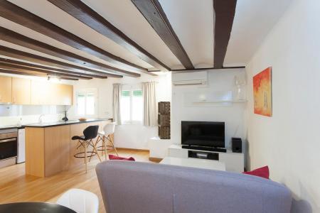 Appartamento in Affitto a Barcelona Assaonadors - Princesa
