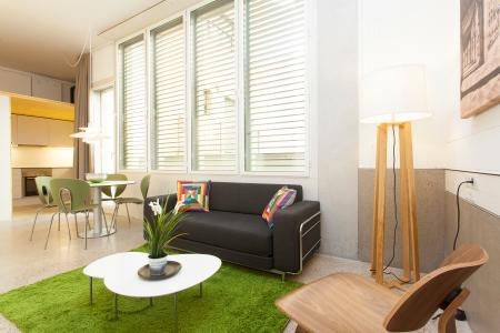 Bright loft for students or young couple
