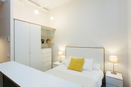 Stupendo monolocale in affitto in via Enamorats - Av Diagonal