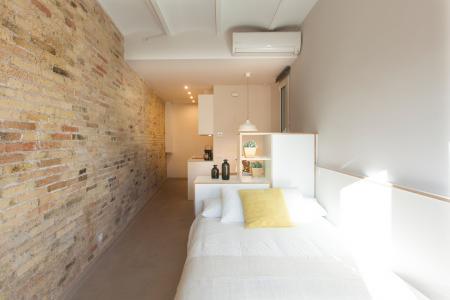 Accogliente monolocale in affitto a Sagrada Familia