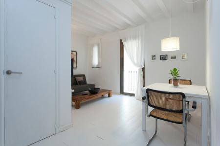 Appartamento in affitto vicino al Palau de la Musica Catalana