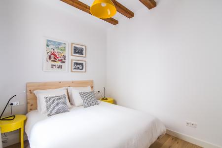 Apartment for Rent in Barcelona Lleona - Plaza Real