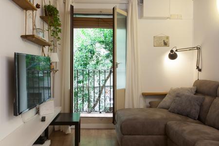 Apartment for Rent in Barcelona Sant Gil - Ronda Universitat