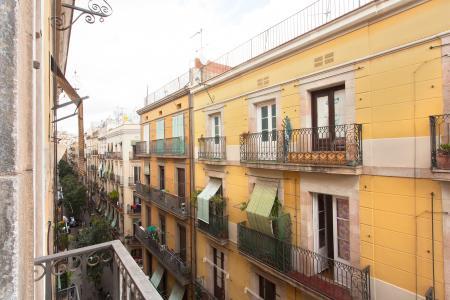 Piso en Alquiler en Barcelona Joaquim Costa - Macba