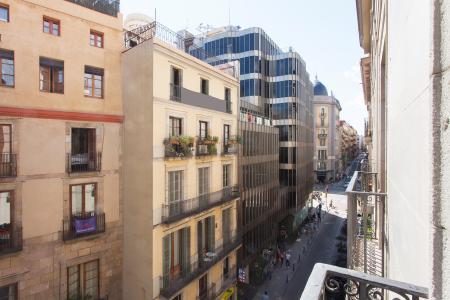 Wohnung zur Miete in Barcelona Princesa - Sant Ignasi